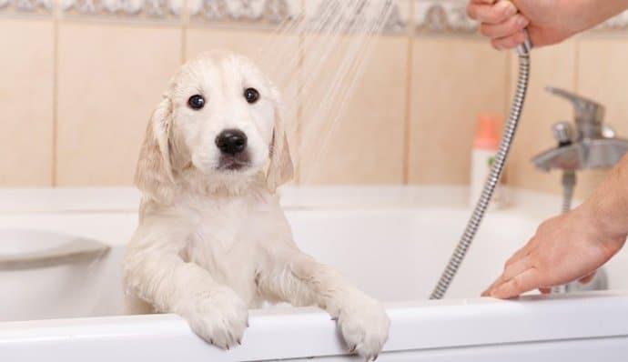 first time bath